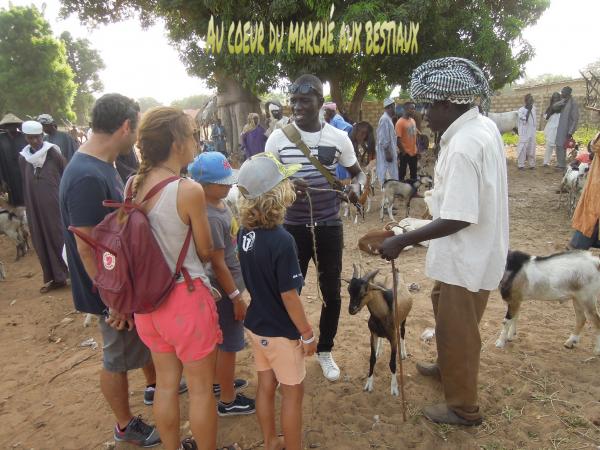 Visite dans le saloum avec nos amis de l'hôtel Royal Baobab Horizon Somone