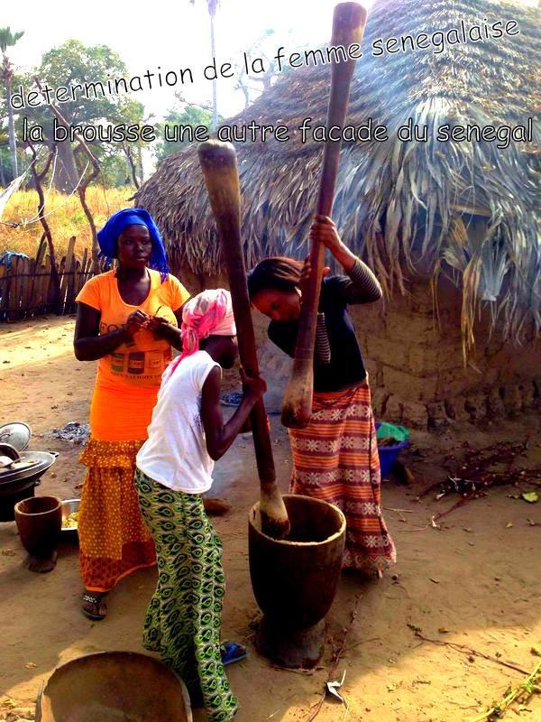 au depart de la somone avec nos amis de l'hôtel royal baobab pour une très belle journée découverte et solidaire dans le sine et le saloum