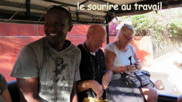 Les meilleurs aventures du Senegal avec senegal excursions au départ de la somone et de saly avec nos amis de royal baobab, filaos, lamatin beach, palm beach pour de nouvelle découvertes