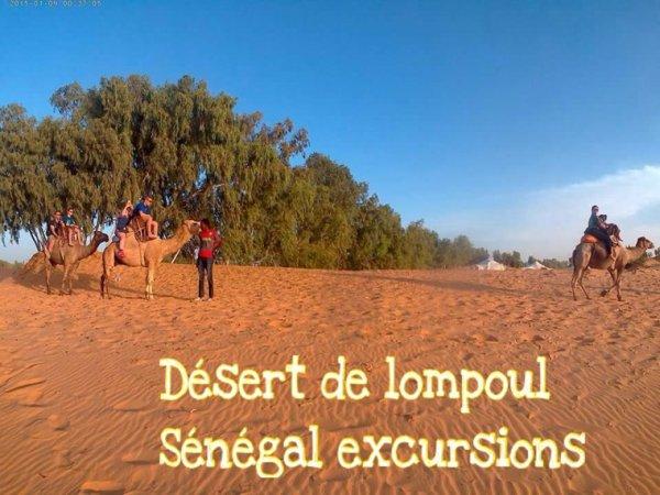 Nos excursions au départ de l'hôtel Africa Queen. St louis au Sénégal et la nuit au désert de lompoul