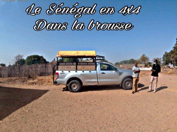 Excursions en brousse avec nos amis de l'hôtel filaos look voyage à Saly vivez nos excursions en petit comité et merci Gérard