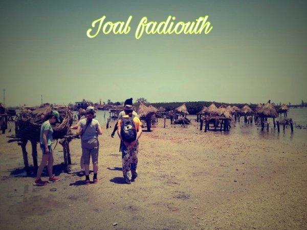 Magnifique journée avec nos amis de l'hôtel les manguiers de Guereo. Une belle journée au c½ur de l'hospitalité Sénégalaise