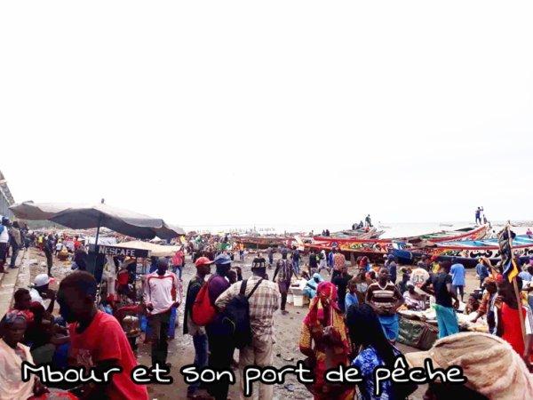 Une belle matinée au port de pêche à Mbour et son marché en petit comité pour mieux apprécier vos excursions au Sénégal