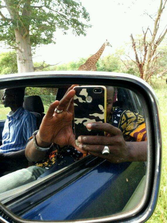 Matinée a la réserve de bandia au départ de la somone.Vivez les meilleurs excursions au Sénégal