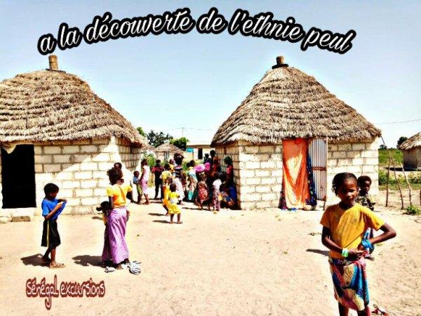 Une belle découverte du Sénégal comme vous l'auriez souhaité rencontre des village peul au coeur du Sénégal et les écoles de brousse au coeur du Sénégal