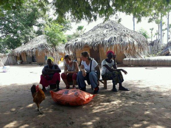 Demandez nous le meilleur et le nous vous donnerons l'excellence.Sénégal excursions