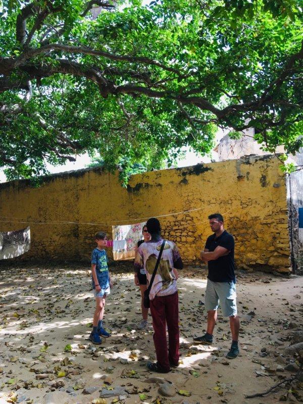 Une découverte de notre cher pays le Sénégal de très belle excursions en famille. Merci Anne pour votre confiance