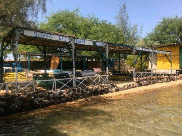 Nos excursions à la carte : réserve de bandia et la lagune de la Somone.Senegal Excursions pour une découverte d'un Sénégal authentique