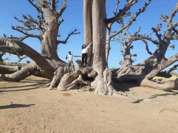 Nos balades en TGV avec nos amis belges du Royal baobab.