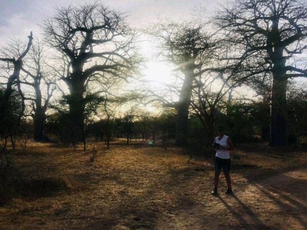 Magnifique de découverte de la réserve de bandia et du lac rose.Merci à nos.amis du Royal baobab horizon.