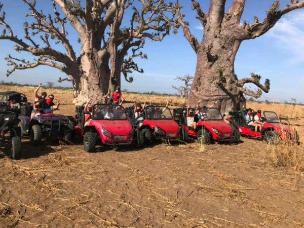 Nos balade en Buggy en brousse.Senegal Excursions la meilleur adresse pour découvrir le Sénégal et sa nature.