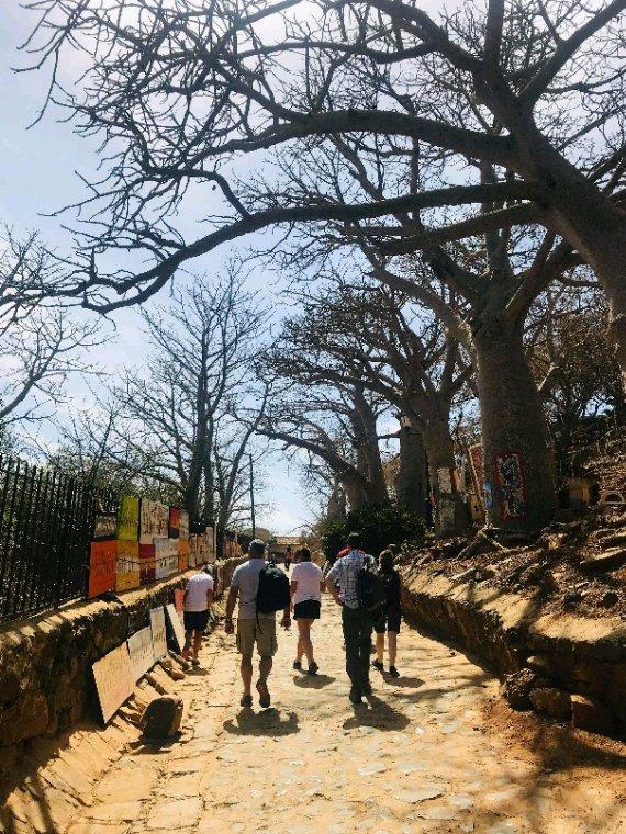 Belle découverte du Sénégal avec nos amis du Royal baobab à la Somone. Une visite de l'ile de Goree et Dakar la capitale