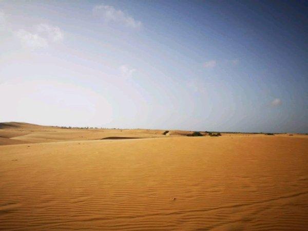 Merci pour votre confiance à Sénégal Excursions