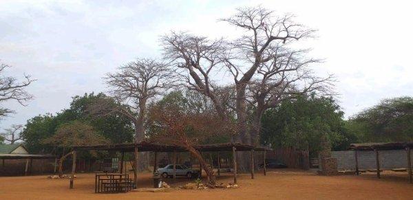 Ils nous ont confiance pour decouvrir un Sénégal en famille. Merci la famille vautier