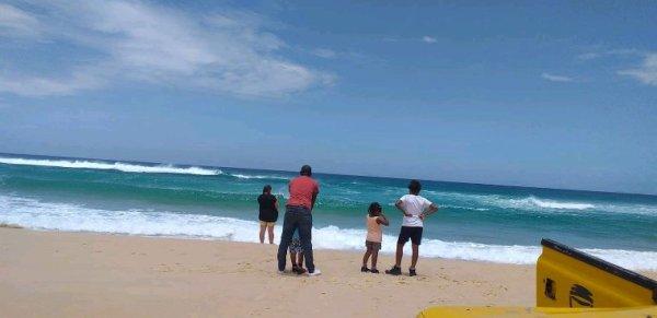 Journée reserve de bandia et lac rose avec nos amis de l'hôtel lamantin beach à Saly