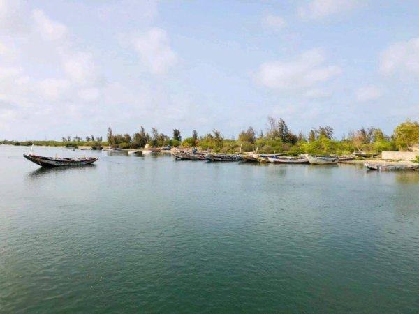 Île aux coquillages jaol fadiouth avec senegal excursions.