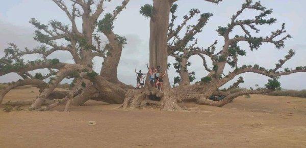 Decouverte du Sénégal en famille avec nos amis ee l'hôtel filaos à Saly au Sénégal