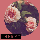 Photo de Cherry-rpg