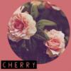 Cherry-rpg