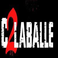 """C2LABALLE / """" La profession nous manipules """" (2010)"""