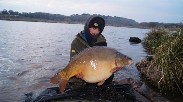 un poisson bretons