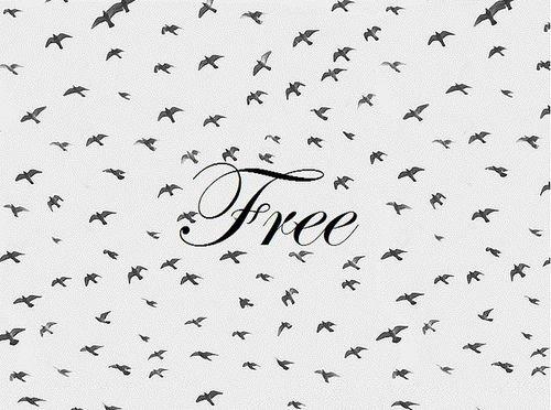 Soif de liberté ...