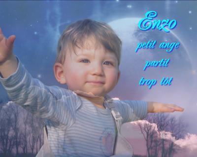 Enzo... Un autre petit ange...