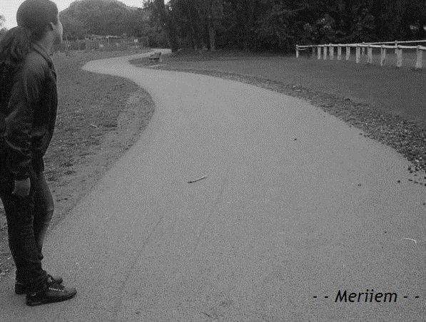 e Mer2iem-x3 Foor life !