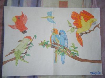 --DESSIN-- Crayons+Feutres