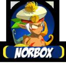 Photo de Norbox