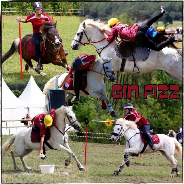 Gin Fizz 2010/2011!