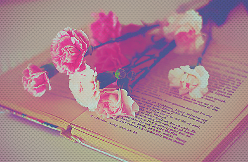 1 000 commentaires, ces roses elles sont pour vous ♥