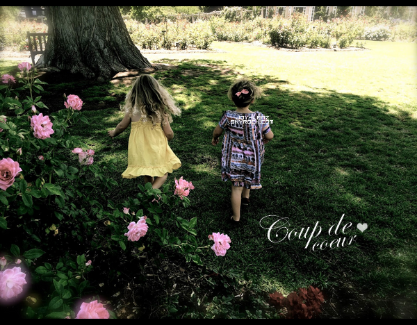 Bethany Joy a posté un nouvel article sur son site! Le thème évoqué est : les rose ! Oui oui. Elle parle de son amour pour les roses et y partage des photos, des produits de beauté et capillaire à base de rose et quelques chansons. Elle dit qu'elle passe beaucoup de temps au Rose Garden's du Pasadena's Huntington Gardens & Library avec Maria. Parmis les produits listés, elle parle du parfum  Stella Absolute par Stella McCartney, et elle ajoute qu'elle ne le mets plus parce qu'il lui rappelle un ex-petit ami.