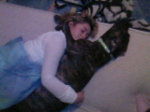 dona avc ma chienne kelya