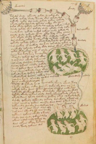 Le manuscrit de voynichvoynich