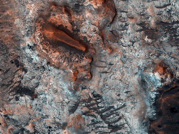 A caccia di fossili su Marte