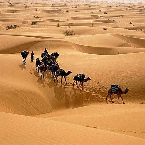 sahara desert tunisie