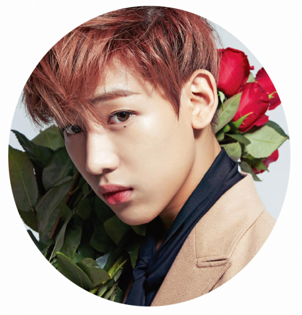 Bambam 2 images