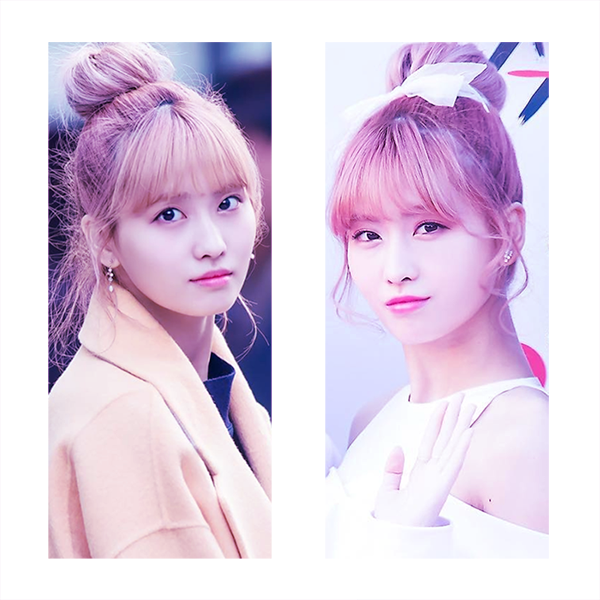 Momo 4 photos