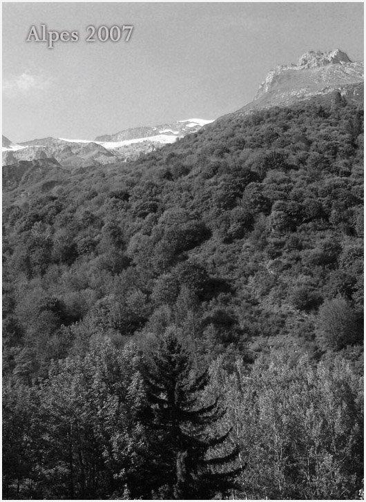 ALPES _  2007