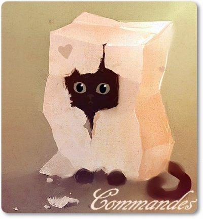 Commandes .