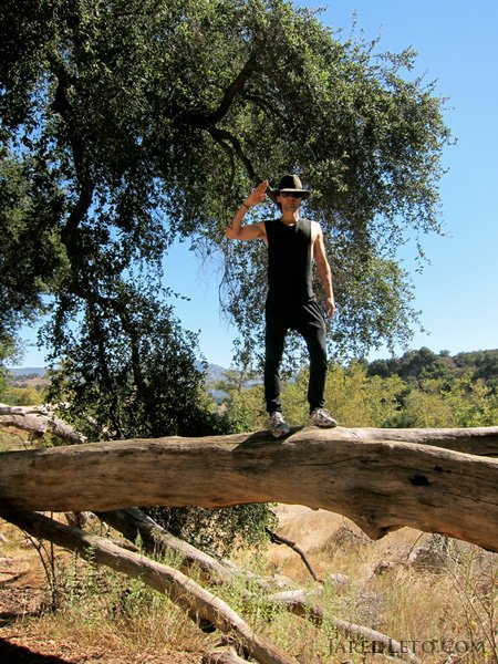 "Twitter de Jared Leto: ""me on the tree – Malibu"""
