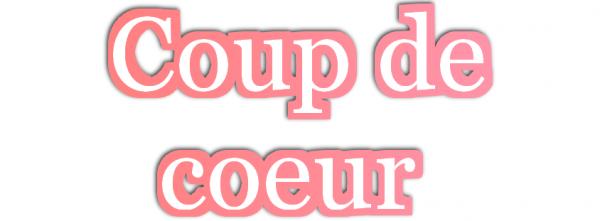 """Coup de c½ur énorme pour : """"Torn"""""""