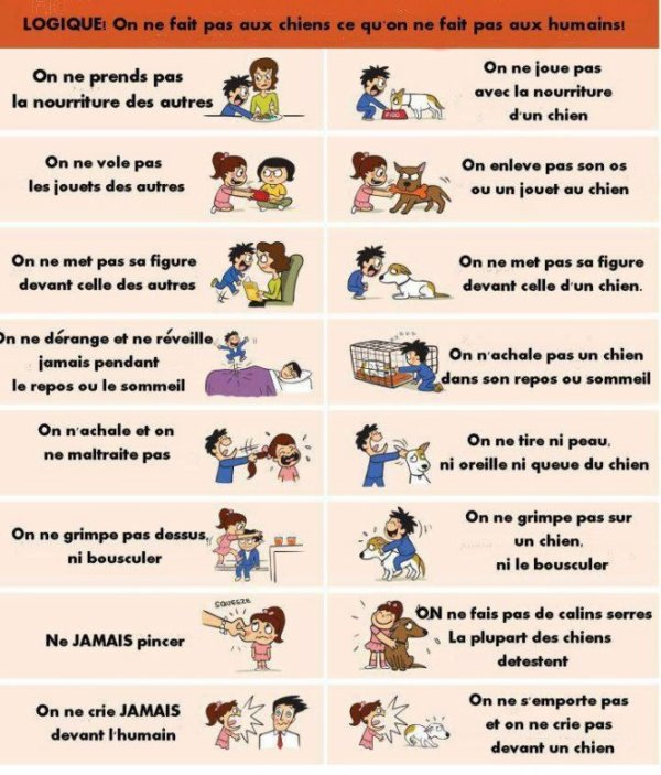 Conseils ou rappels ou informations !? Advices or reminders or news !?