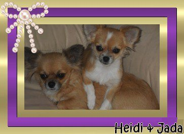 Heidi et Jada