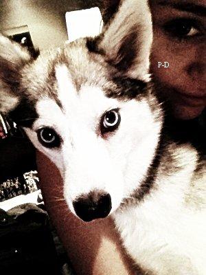 4 Mars: Miley faisant un jogging avec son chien Floyd. Pour moi c'est un petit Bof, j'aime bien que son short  :o