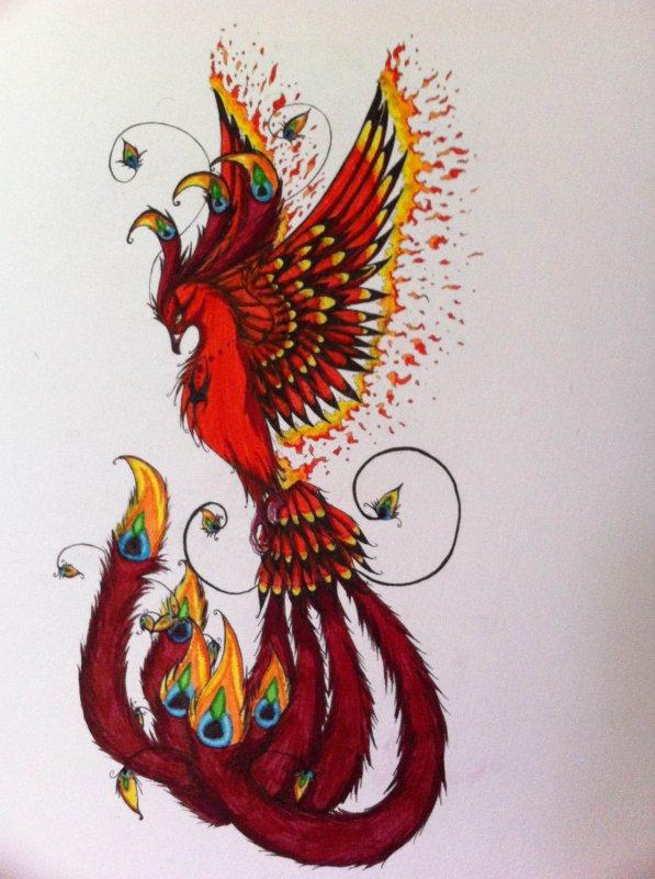 Tatouage Phénix Blog Art