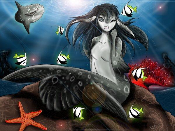 ★ Sirène Mola-Mola ★