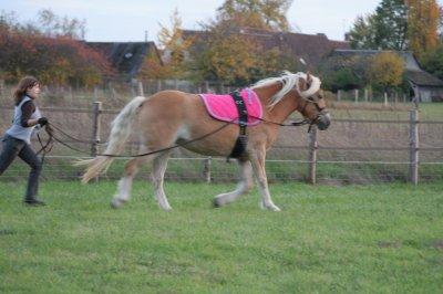 Une cowgirl, un cheval, 3 barils! Et tu réussiras c'est sûre, il suffit de ne pas lâcher prise et d'aller jusqu'au bout...♥