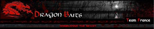 Bienvenu sur le blog officiel de la Team Dragon Baits France